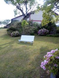 リゾートホテルの庭園に置いてある椅子。ここに座って考え事をするのが好きだ。