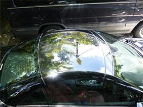 鳥のフンがついた車の屋根