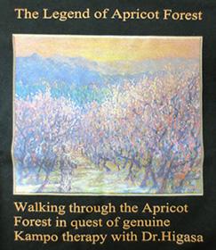 「日笠医師とともに本当の漢方治療を求めて杏の林の中を散策している」