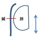 鍼は体に刺さって固定されているが、肺は呼吸で動くから肺が裂けてしまう。