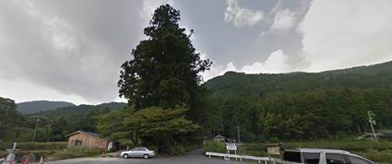 神社に通じる参道は高い木の間にある。後ろの山がご神体。 何やら空が高いような澄んだ気を感じることができるだろうか?