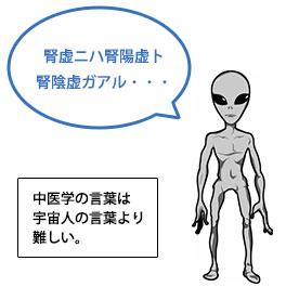 中医学の言葉は宇宙人の言葉より難しい