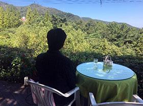 カフェレストランからの眺め