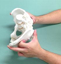 骨格の歪みを調べる方法